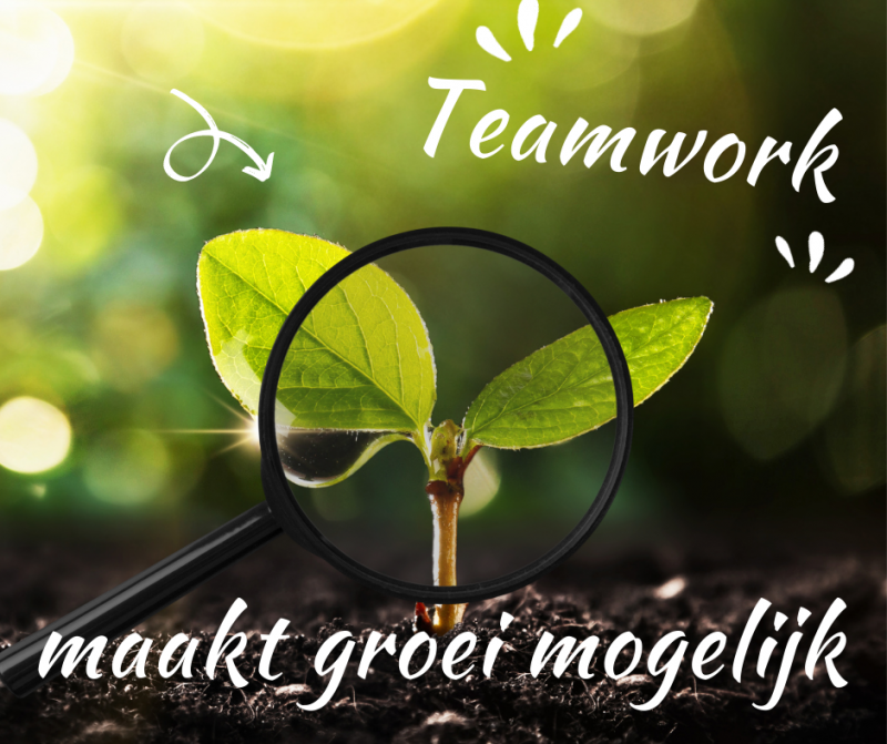 Teamwork HKW Mark Verbeek